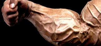 secret-to-huge-forearms-frank-mcgrath-bi